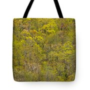 Among The Trees Tote Bag