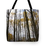 Amongst The Trees Tote Bag
