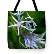 Amsonia Blue Stars Tote Bag