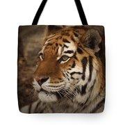 Amur Tiger 2 Tote Bag by Ernie Echols