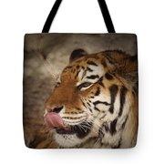 Amur Tiger 3 Tote Bag by Ernie Echols