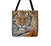 Amur Tiger Magnificence Tote Bag
