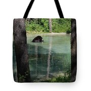Bear In The Afternoon Tote Bag