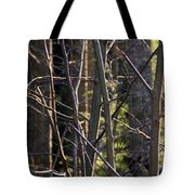 An Afternoon Walk Tote Bag