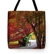 An Amish Autumn Ride Tote Bag
