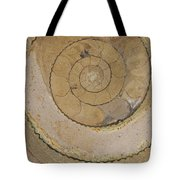 An Ancient Ammonite Pattern Vi Tote Bag