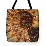 An Ancient Treasure II Tote Bag