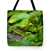 An Angry Anole Tote Bag