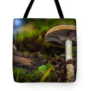 An Ant's View Tote Bag