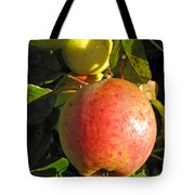 An Apple After Frost Tote Bag