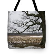 An Appleton Tree And Field In Winter Tote Bag