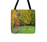 An Autumn Childhood Tote Bag