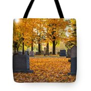 Forest Hill Autumn Light  Tote Bag by Mary Amerman