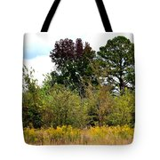 An Autumn Day In Alabama Tote Bag