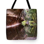 An Autumn Day In West Fork  Tote Bag