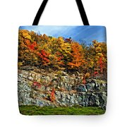 An Autumn Day Painted Tote Bag