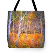 An Autumn Symphony Of Colour Tote Bag