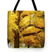 An Autumn Walk - 2 Tote Bag