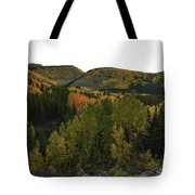An Avalanche Of Color Tote Bag