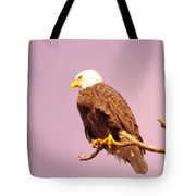 An Eagle Hanging Out Tote Bag