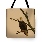 An Eagle In An Old Snag Tote Bag