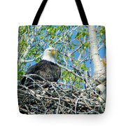 An Eagle In Its Nest  Tote Bag