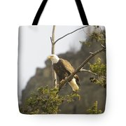 An Eagle In The Spring Tote Bag