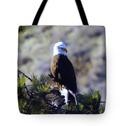 An Eagle In The Sun Tote Bag