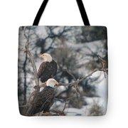 An Eagle Pair  Tote Bag
