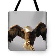 An Eagle Posing  Tote Bag