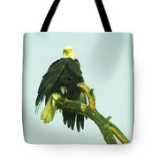 An Eagle Shaking It Off Tote Bag