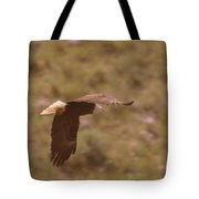 An Eagle Turns  Tote Bag