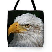 An Eagle's Portrait Tote Bag