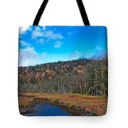 An Early Fall Day At Cary Lake Tote Bag