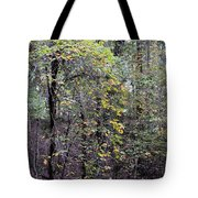 An Early October Eve Tote Bag