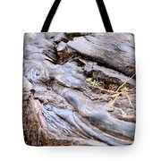 An Earthen Abstract Tote Bag