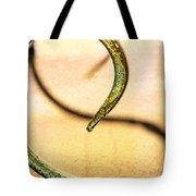 An Echoed Spiral Tote Bag