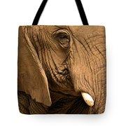 An Elephant's Eye Tote Bag