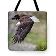 An Female Eagle Flys Protectively Over Tote Bag