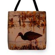 An Ibis Feeding Tote Bag