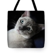 An Inquiring Mind Tote Bag