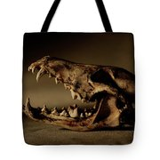 An Old Coyote Skull, Canis Latrans Tote Bag