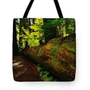 An Old Fallen Tree Tote Bag