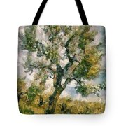 An Old Olive Grove Tote Bag
