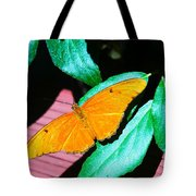 An Orange Butterfly Tote Bag