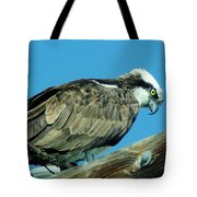 An Osprey Tote Bag