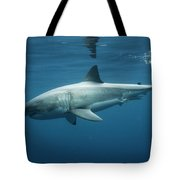 An Underwater Profile View Of A White Tote Bag