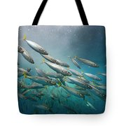 An Underwater View Of Schooling Fish Tote Bag