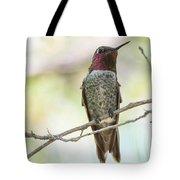 Ana Hummingbird Tote Bag