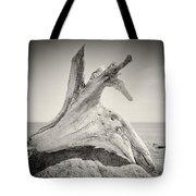 Analog Photography - Driftwood Tote Bag